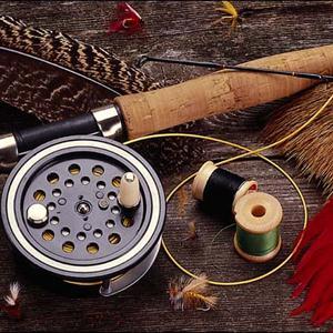 Охотничьи и рыболовные магазины Фирово